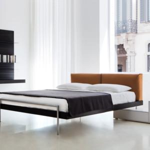Shin Bed